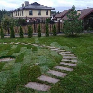 Рулонный газон для садового участка